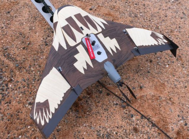 Rick Steven's team has tried using camouflage on the UAV to protect it from eagles. Credit : Rick Steven